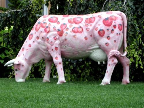 rózsaszín boci