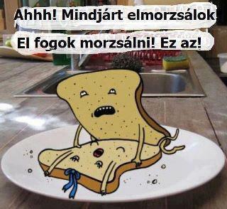 két kenyér