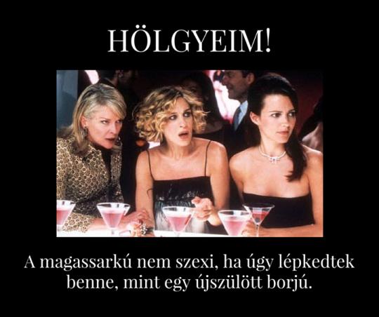 Hölgyeim