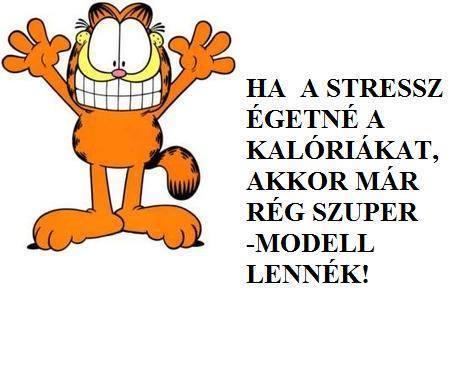 Ha a stressz