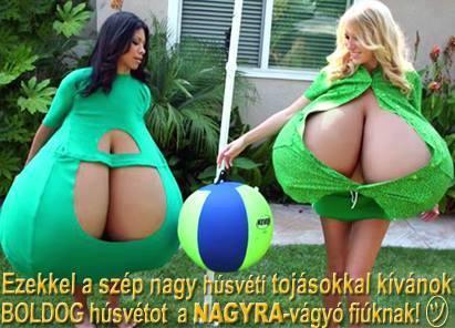 Boldog húsvétot fiúk